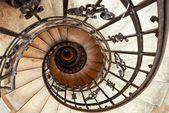 Premium Wandfolie »Carina Buchspies: Treppe«