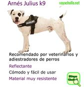 Arnés muy cómodo – Todo para Mascotas – # arnés # cómodo #mascotas #muy #par …  – Animales Mundo