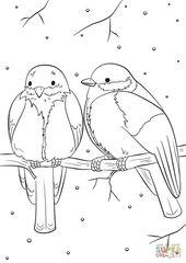 21+ Exklusives Bild von Vogel Malvorlagen   – adult coloring pages – #Adult #Bil…