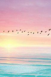 (notitle) – Nature – #Nature #notitle   – Iphone hintergrundbilder tumblr