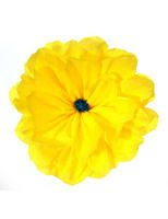 Cinco De Mayo Decorations Rachel S Yellow Flower Image Mexican