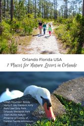 Orlando Travel Tips 7 Places For Nature Lovers Orlando Travel