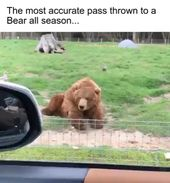 Most accurate pass to a bear all season