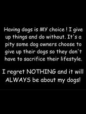 Dogs Quote Dogs Quote Wallpaper Quote Dogs Pet Pets Dogpet