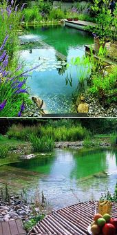 17 Family Natural Swimming Pools You Want To Jump Into Immediately