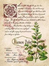 Pages Grimoire, Sort, Herbes et Le Livre des Ombres, Magie Pratique; Livre de Shadows 4 page set # 10   – Wiccan