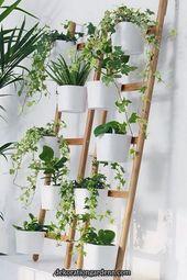 25 amazing indoor garden decor ideas you can copy …