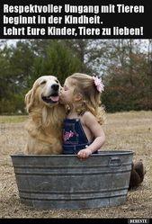 Der respektvolle Umgang mit Tieren beginnt im … | Lustige Bilder Sprüche Witze r …