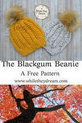 Knitting Patterns for Beginners – Chunky Knit Hat