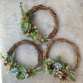 For Christmas, birthday or housewarming: 12″ (30cm) Living succulent wreath (MADE TO ORDER)
