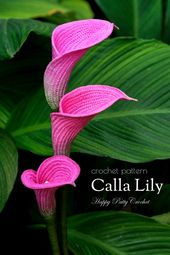 Crochet Sample for a Calla Lily – Crochet Flower Sample for an Arum Lily Flower
