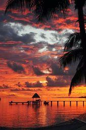 Coucher de soleil à Tahiti.                                                    …