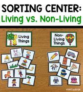 Living vs. Non-Living Sorting Cards