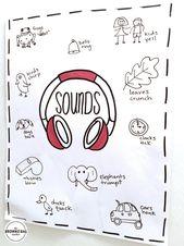 Sound: 1st Grade Science