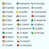 Heute lernen wir die Namen von Tieren in #Spanish. ¡Feliz Domingo! ☀ Mit dir
