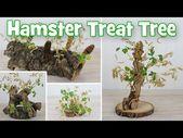 Natürliche Hamster Treat Trees DIY von Hammy Time   – Hamster