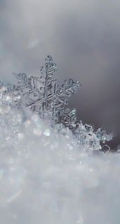 Icy snowflakes winter iPhone android cellphone lock screen wallpaper background …