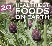 24 Healthiest Foods on Earth | Health Wholeness 1