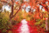 Wall #Art #Decor #Large #Canvas #and #Metal #Prints #of #Red #Spanish #Moss #Forest #Art #for…