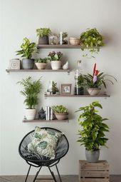 Moderne und elegante Blumentopfideen für senkrechte Wände 50 # Blumentopfideen   – Wohnideen