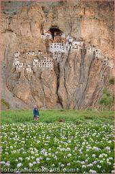 Großartig Unglaubliches Indien: Phugtal Monastery