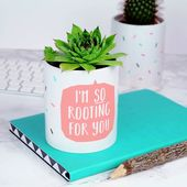 Ich bin so für Sie Rooting Plant Pot   – Products