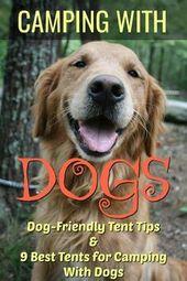 Camping med hundtips och tricks. De bästa tälten för camping med hund! Kontrollera …