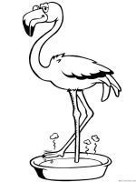 Flamingo Coloring Pages Download And Print Flamingo Coloring Pages Flamingo Coloring Page Shape Coloring Pages Animal Coloring Pages