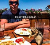 45 Funny Animals That Like To Appear On Snapchat – Page 5 of 5 – Wackyy