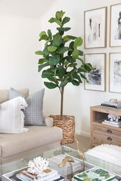 7 Go-To Ideas for Living Room Corner Decor!