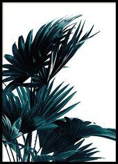 Botanik-Poster mit Pflanze | Poster mit Foto | Desenio