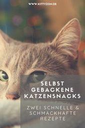 Katzen Leckerlis selbst machen – Zwei unwiderstehliche Leckerli Rezepte – Rezepte