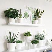 42 Erstaunliche Tipps und Ideen für die Gartendekoration in Innenräumen – Pflanzen Drinnen