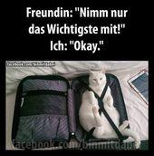 Freunde: Nur Tak # funny-animals- # friends #lustigeriere #nur #Tak