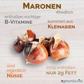 Maronen: Gesunder Snack in der Vorweihnachtszeit