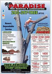 Paradise Landscaping Tree Removal In 2020 Landscaping Trees Tree Removal Tree Service