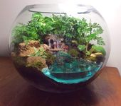 How to make water for a terrarium? Get help for working with epoxy resin   – Fairy Gardens