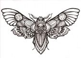"Awesome ""Death's Head"" Hawk Moth Tattoo design"