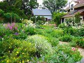 Permakultur Garten anlegen – So gestalten Sie ein pflegeleichtes und produktives Ökosystem
