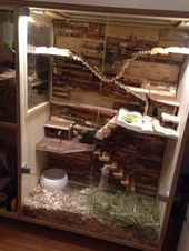 Large Wooden Pet Cage – I love the layout of this cage. Especially the bendy bri… – Degu