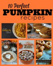 These 10 perfect pumpkin recipes include everythin…