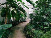 #gardening holidays uk_6365_20190928205344_53    #gardening and types of gardeni…,  #garden…