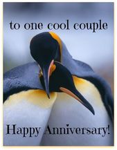 Best 50 Creative Happy Anniversary Images, Message, Memes