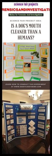 Science fair projects #forensicsandinvestigations #seotrends #science. science aesthetic, science art, science facts, science word, science experiment…