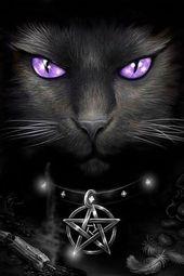 Una mirada dice más de mil # pentagramas … # gatos #gothicdeko #poster   – Für die Wand!