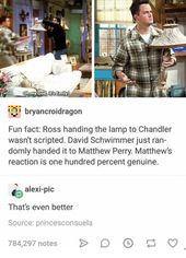 David Schwimmer, Matthew Perry, and Fun: oh my Godhit's Emily bryancroidrago…