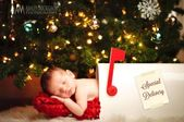 29 Babies Who Totally Nailed Their First Christmas Photo Shoot – Newborn Natal