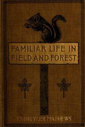Arbres familiers et leurs feuilles: Mathews, F. Schuyler (Ferdinand Schuyler), 1854-1938: téléchargement gratuit, emprunt et diffusion en continu   – vintage book art