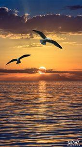 خلفيات موبايل جديدة 2019 خلفيات موبايل 3dlat Net 04 17 Ddca Nature Pictures Scenery Sunset Photography