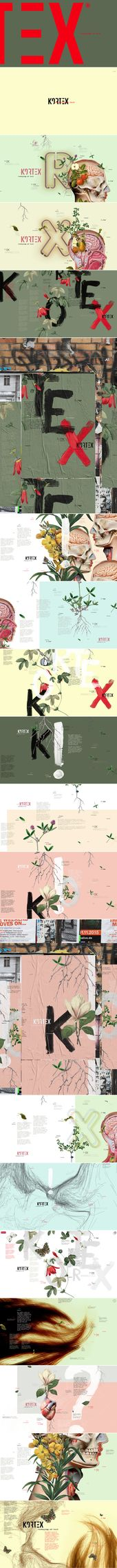 Kortex – Identidad visual   – inspiracion